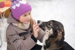 GOMEL, BELARUS - 15 JANVIER 2017 : Amitié avec des animaux La fille regrette le chien égaré en hiver Photographie stock
