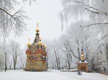 GOMEL, BELARUS - 23 JANVIER 2018 : Le tombeau à la cathédrale de Peter et le Paul dans la ville se garent dans le gel glacial Photo libre de droits