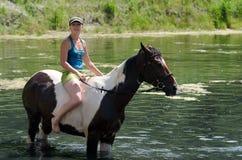 GOMEL, BELARUS - 24 JUIN 2013 : Baigner des chevaux dans le lac Photographie stock libre de droits