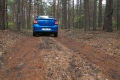 GOMEL, BELARUS - 24 MAI 2017 : La voiture bleue de RENO LOGAN a garé dans une forêt foncée de pin Photo stock