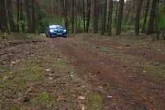 GOMEL, BELARUS - 24 MAI 2017 : La voiture bleue de RENO LOGAN a garé dans une forêt foncée de pin Image stock