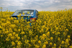 GOMEL, BELARUS - May 24, 2017: the blue car is parked on the rapeseed field. Royalty Free Stock Photos