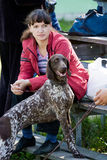 Gomel, Belarus - May 27: Exhibition of hunting dogs. competitions in conformation May 27, 2013 in Gomel, Belarus .. Stock Images