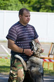 Gomel, Belarus - May 27: Exhibition of hunting dogs. competitions in conformation May 27, 2013 in Gomel, Belarus .. Stock Photography