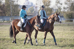Gomel, Belarus - October 16, 2016: Two girls rider warm up the horses before the competition Stock Image