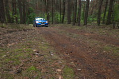 GOMEL, BIAŁORUŚ - 24 2017 MAJ: RENO LOGAN błękitny samochód parkujący w ciemnym sosnowym lesie Obraz Stock