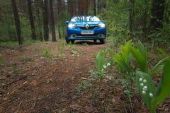 GOMEL, BIAŁORUŚ - 24 2017 MAJ: RENO LOGAN błękitny samochód parkujący w ciemnym sosnowym lesie Obraz Royalty Free