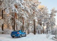 Gomel, Bielorrússia - 24 de janeiro de 2018: um carro azul RENAULT LOGAN estacionou na floresta do inverno foto de stock