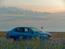 GOMEL, BIELORRÚSSIA - 9 DE JUNHO DE 2019: Renault Logan azul é estacionado em um campo no por do sol fotografia de stock