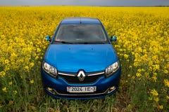 GOMEL, BIELORRÚSSIA - 24 de maio de 2017: o carro azul é estacionado no campo da colza Imagem de Stock Royalty Free