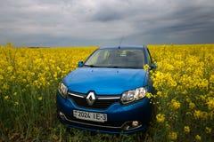 GOMEL, BIELORRÚSSIA - 24 de maio de 2017: o carro azul é estacionado no campo da colza Imagens de Stock Royalty Free