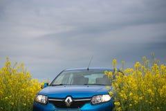 GOMEL, BIELORRÚSSIA - 24 de maio de 2017: o carro azul é estacionado no campo da colza Fotos de Stock