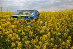 GOMEL, BIELORRÚSSIA - 24 de maio de 2017: o carro azul é estacionado no campo da colza Fotos de Stock Royalty Free