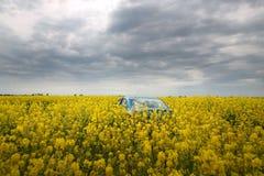 GOMEL, BIELORRÚSSIA - 24 de maio de 2017: o carro azul é estacionado no campo da colza Foto de Stock