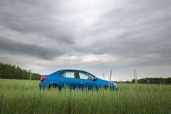 GOMEL, BIELORRÚSSIA - 24 de maio de 2017: O carro azul de RENO LOGAN é estacionado no campo verde Fotografia de Stock Royalty Free