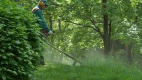 GOMEL, BIELORR?SSIA - 15 DE MAIO DE 2019: Conjunto Paskevichi do pal?cio e do parque Um homem sega um lawnmower do gramado vídeos de arquivo
