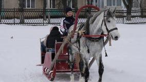 GOMEL, BIELORRUSIA - 20 DE ENERO DE 2019: la gente monta en invierno en un trineo traído por caballo metrajes