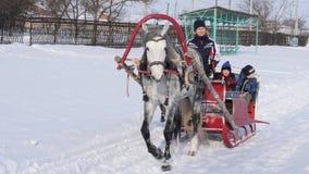 GOMEL, BIELORRUSIA - 20 DE ENERO DE 2019: la gente monta en invierno en un trineo traído por caballo almacen de metraje de vídeo