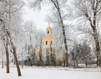 GOMEL, BIELORRUSIA - 23 DE ENERO DE 2018: Peter y Paul Cathedral en la ciudad parquean en helada helada Imagen de archivo
