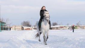 GOMEL, BIELORRUSIA - 19 DE ENERO DE 2019: un jinete en un caballo rueda a un niño en un trineo en una tubería almacen de video