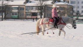 GOMEL, BIELORRUSIA - 19 DE ENERO DE 2019: un jinete en un caballo rueda a un niño en un trineo en una tubería almacen de metraje de vídeo