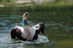 GOMEL, BIELORRUSIA - 24 DE JUNIO DE 2013: Baño de caballos en el lago Foto de archivo