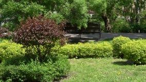 GOMEL, BIELORRUSIA - 15 DE MAYO DE 2019: Conjunto del palacio y del parque del Rumyantsevs Paskevichi Parque verde acogedor metrajes
