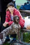 Gomel, Bielorrusia - 27 de mayo: Exposición de los perros de caza competencias en conformación el 27 de mayo de 2013 en Gomel, Bi imagenes de archivo