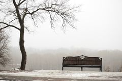 Gomel _ en ensam bänk i ett dimmigt parkerar arkivfoton