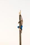 GOMEL VITRYSSLAND - Februari 21, 2014: Ung man Royaltyfria Foton