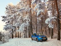 Gomel Vitryssland - JANUARI 24, 2018: en blå bil RENAULT LOGAN som parkeras i vinterskogen Royaltyfri Bild
