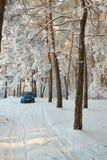Gomel Vitryssland - JANUARI 24, 2018: en blå bil RENAULT LOGAN som parkeras i vinterskogen Fotografering för Bildbyråer