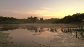 Gomel Vitryssland misten fördelar över vattnet på gryning lager videofilmer