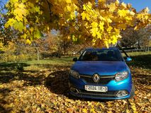 GOMEL VITRYSSLAND - Oktober 14, 2018: Auto Renault Logan som parkeras i höstskogen arkivbilder