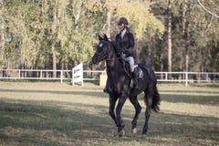 Gomel Vitryssland - Oktober 16, 2016: OS:er för kombinerat nordiskt Hoppa upp till 115 cm Royaltyfri Fotografi