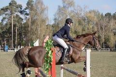 Gomel Vitryssland - Oktober 16, 2016: OS:er för kombinerat nordiskt Hoppa upp till 115 cm Fotografering för Bildbyråer