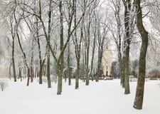 GOMEL, WEISSRUSSLAND - 23. JANUAR 2018: Peter und Paul Cathedral in der Stadt parken im eisigen Frost Stockbild