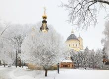 GOMEL, WEISSRUSSLAND - 23. JANUAR 2018: Peter und Paul Cathedral in der Stadt parken im eisigen Frost Stockfoto
