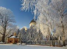 GOMEL, WEISSRUSSLAND - 23. JANUAR 2018: Peter und Paul Cathedral in der Stadt parken im eisigen Frost Stockfotografie