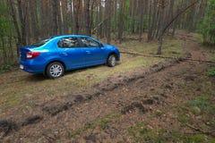 GOMEL, WEISSRUSSLAND - 24. MAI 2017: Blaues Auto RENO LOGANs parkte in einem dunklen Kiefernwald Lizenzfreie Stockbilder