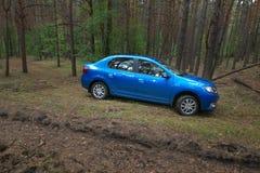 GOMEL, WEISSRUSSLAND - 24. MAI 2017: Blaues Auto RENO LOGANs parkte in einem dunklen Kiefernwald Stockfotografie