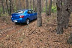 GOMEL, WEISSRUSSLAND - 24. MAI 2017: Blaues Auto RENO LOGANs parkte in einem dunklen Kiefernwald Stockbild