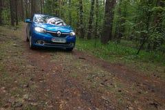 GOMEL, WEISSRUSSLAND - 24. MAI 2017: Blaues Auto RENO LOGANs parkte in einem dunklen Kiefernwald Lizenzfreies Stockbild