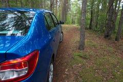 GOMEL, WEISSRUSSLAND - 24. MAI 2017: Blaues Auto RENO LOGANs parkte in einem dunklen Kiefernwald Lizenzfreies Stockfoto