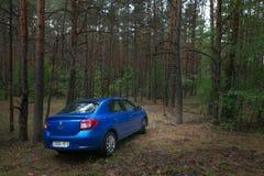 GOMEL, WEISSRUSSLAND - 24. MAI 2017: Blaues Auto RENO LOGANs parkte in einem dunklen Kiefernwald Stockbilder