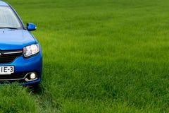 GOMEL, WEISSRUSSLAND - 24. Mai 2017: das blaue Auto wird auf dem grünen Feld geparkt Stockfotografie
