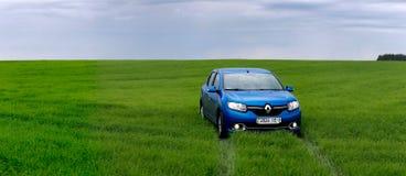 GOMEL, WEISSRUSSLAND - 24. Mai 2017: das blaue Auto wird auf dem grünen Feld geparkt Lizenzfreie Stockfotografie