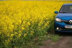 GOMEL, WEISSRUSSLAND - 24. Mai 2017: das blaue Auto wird auf dem Rapssamenfeld geparkt Stockfotografie