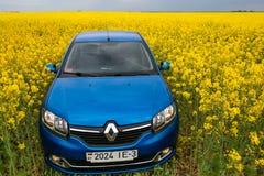 GOMEL, WEISSRUSSLAND - 24. Mai 2017: das blaue Auto wird auf dem Rapssamenfeld geparkt Lizenzfreie Stockfotografie