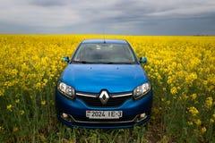 GOMEL, WEISSRUSSLAND - 24. Mai 2017: das blaue Auto wird auf dem Rapssamenfeld geparkt Lizenzfreies Stockbild